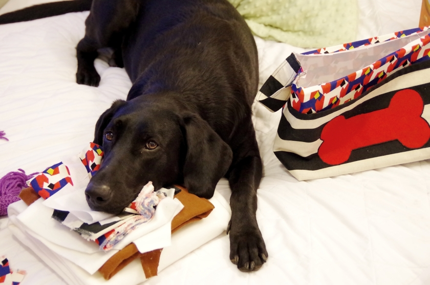Puppy Sewing Helper | Life by Ky Blog